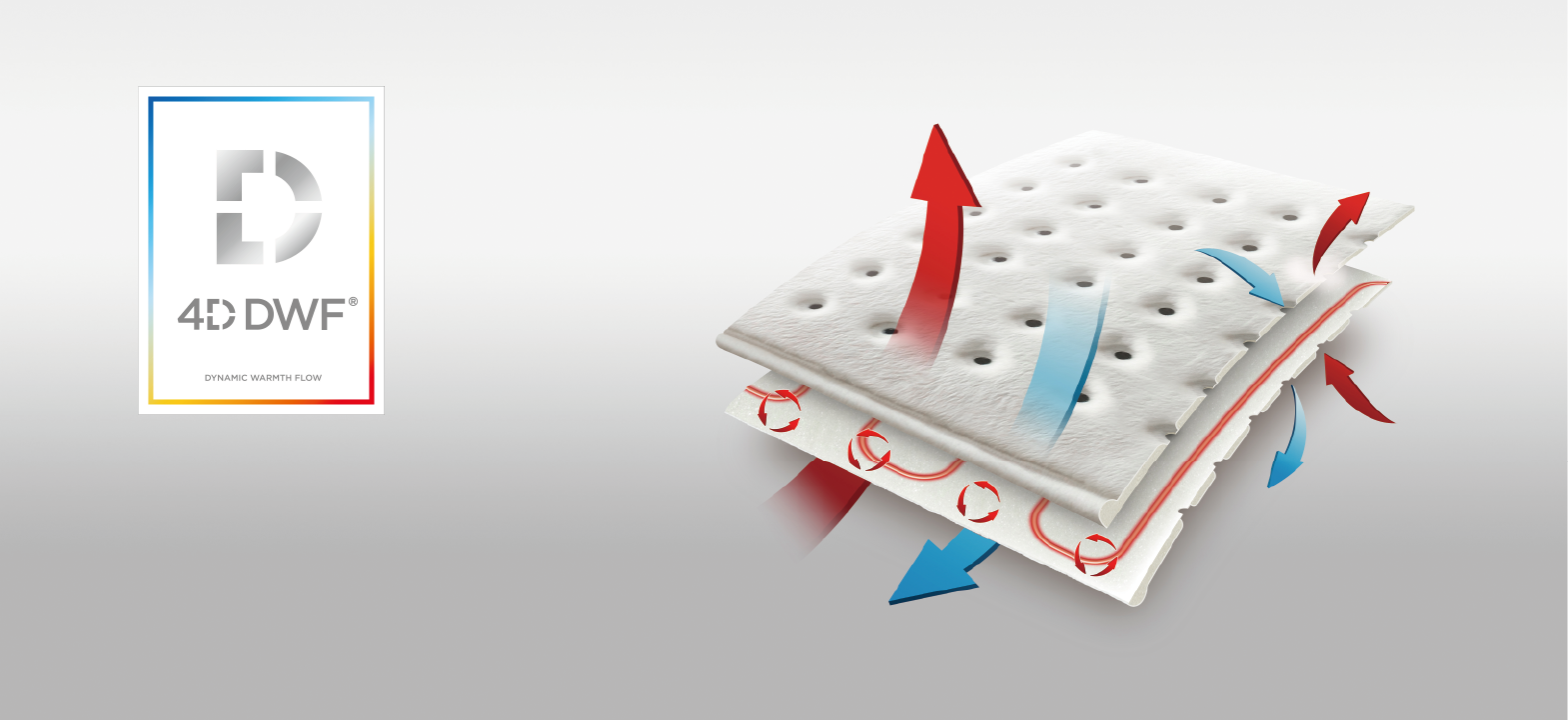 4d dynamic warmth flow (4D DWF)