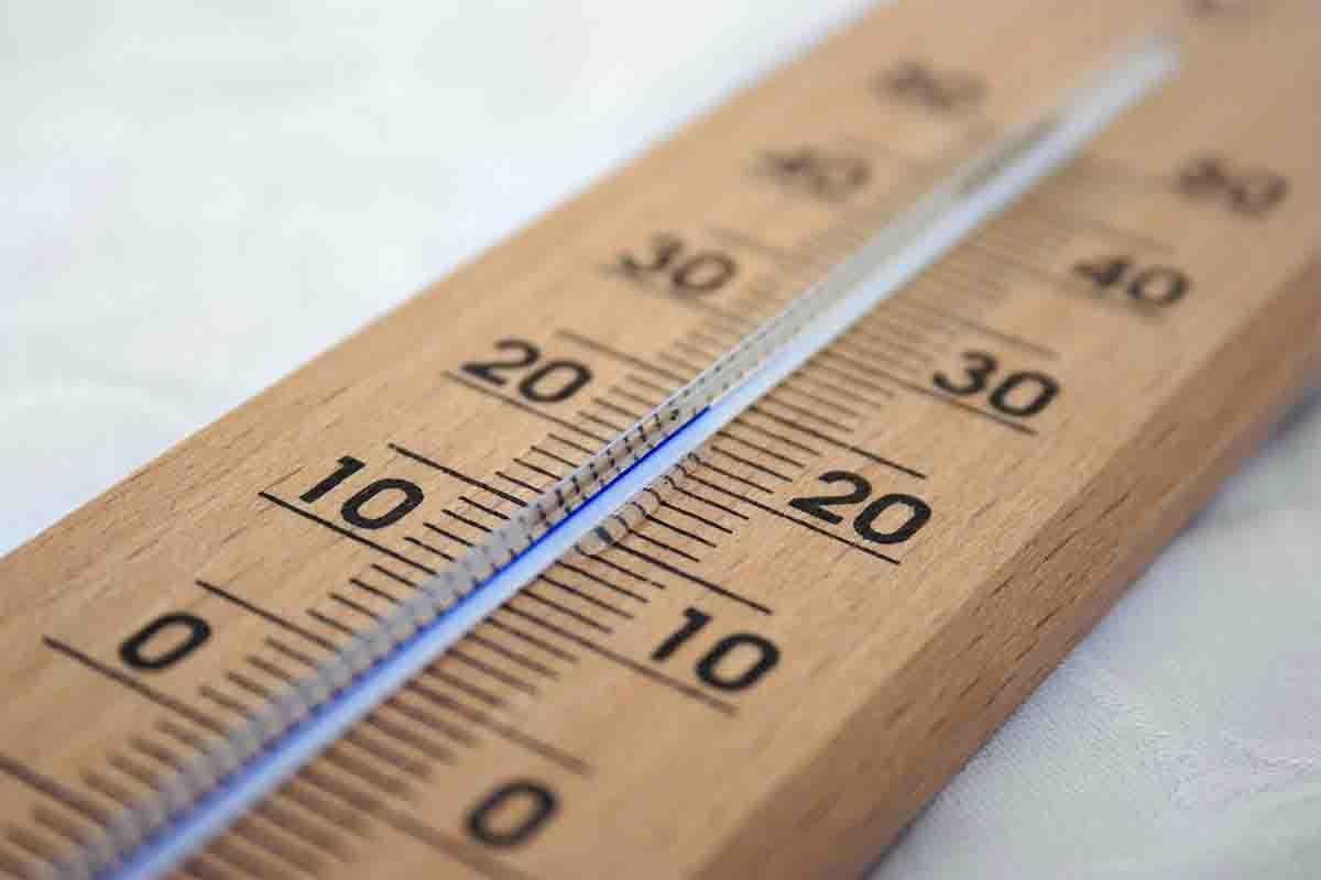 measure body temperature
